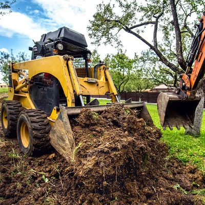 Why You Should Hire A Land Clearing Professional in Bradenton