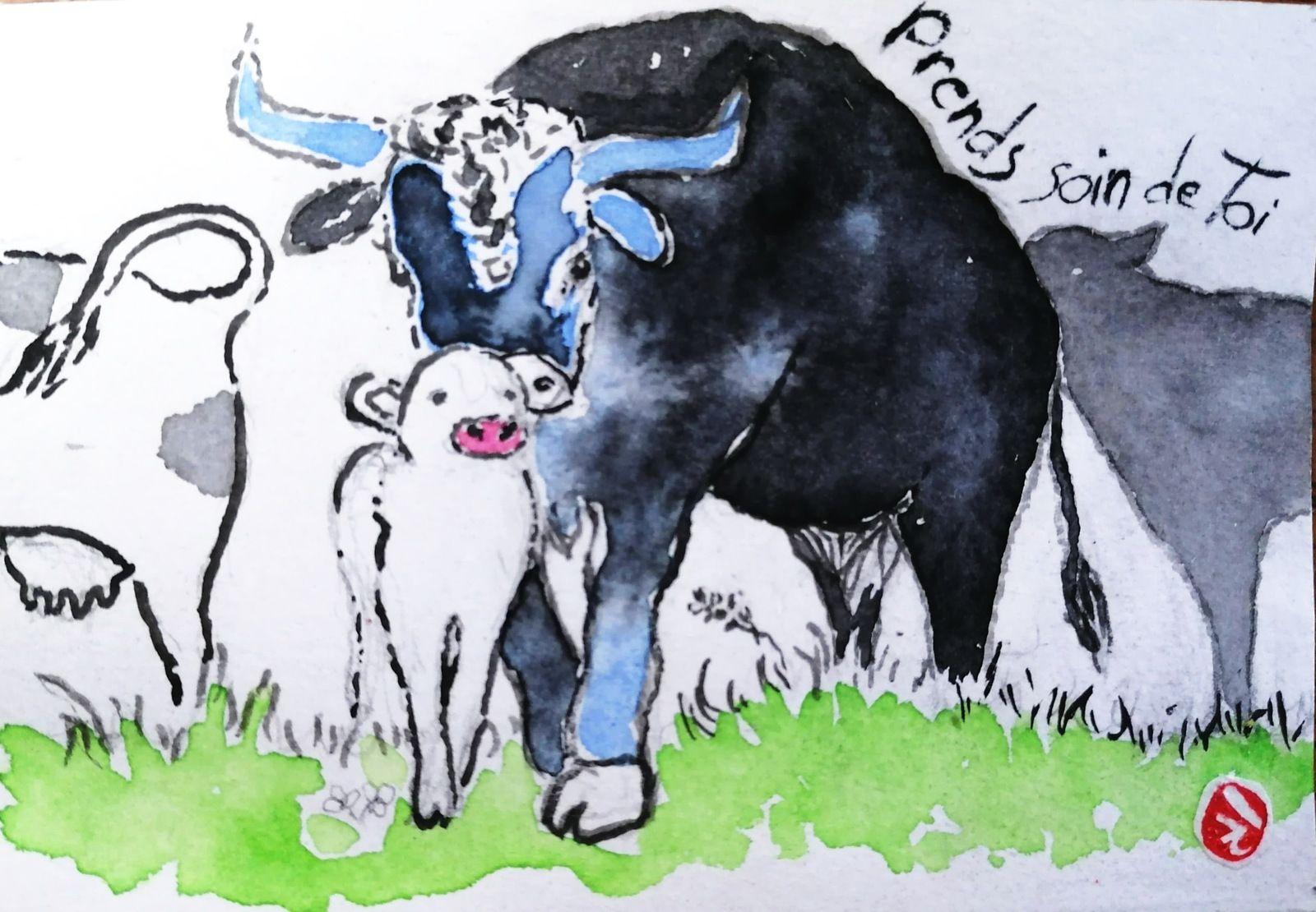Boeufs et vaches, voeux de nouvelles année