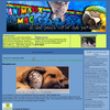 Candidat 126 : Animaux Mag