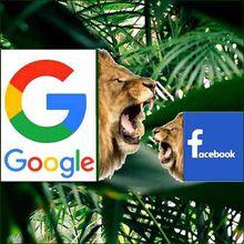 LOCAL VAR : Lou Nistoun - Avoir une page Facebook ce n'est pas être sur internet