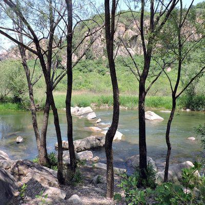 Me promenant seule le long de la rivière Baihe - 独游雨岩