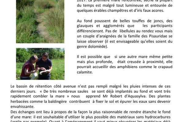 Offrez une mare aux papas de la nature! Compte-rendu de la   sortie nature organisée par Asparagus en partenariat avec Aquasylva,  entreprise argenteuillaise de génie écologique