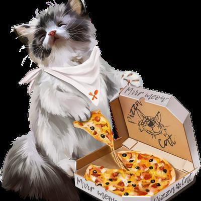 Chat - Pizza - Gourmandises - Render-Tube - Gratuit