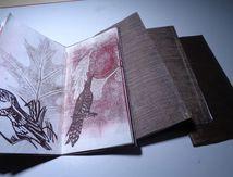 Livres sur papier japon ,