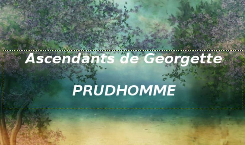 H comme Homme, PrudHomme