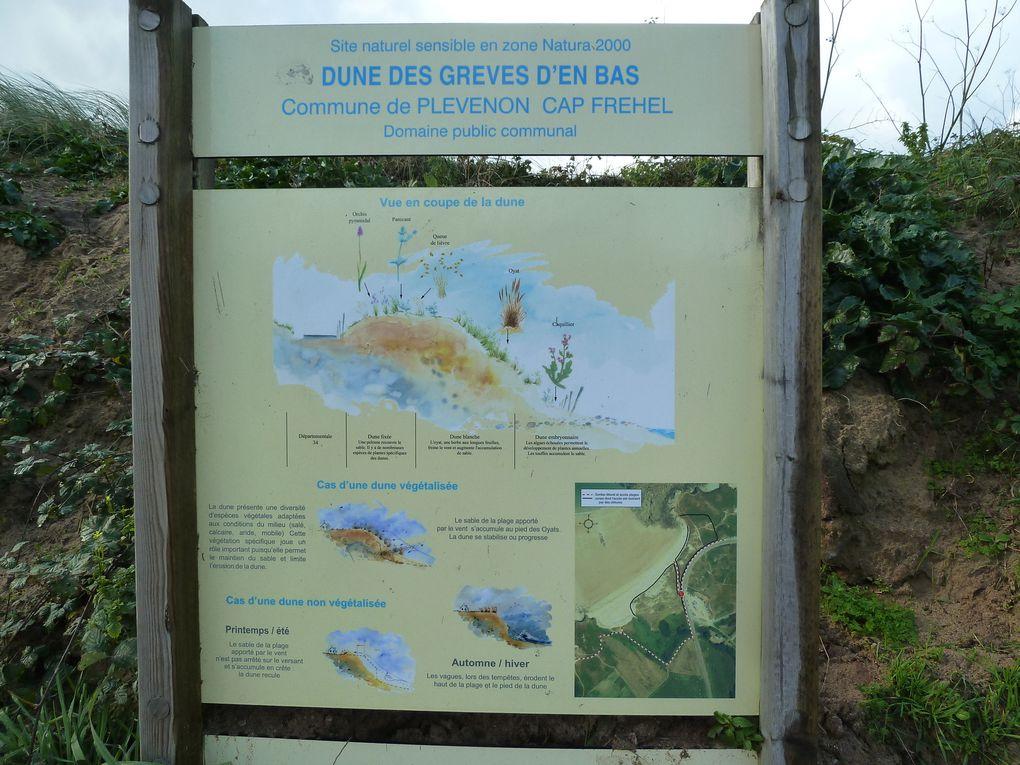 Les Grèves d'en bas et l'Anse du Cros, sur le panneau sont expliqués la végétalisation des dunes et leur érosion.