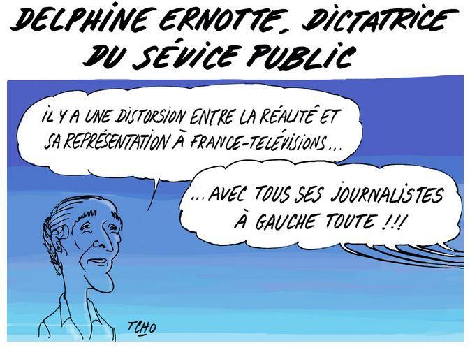 DELPHINE ERNOTTE, DIRECTRICE DU SERVICE PUBLIC...