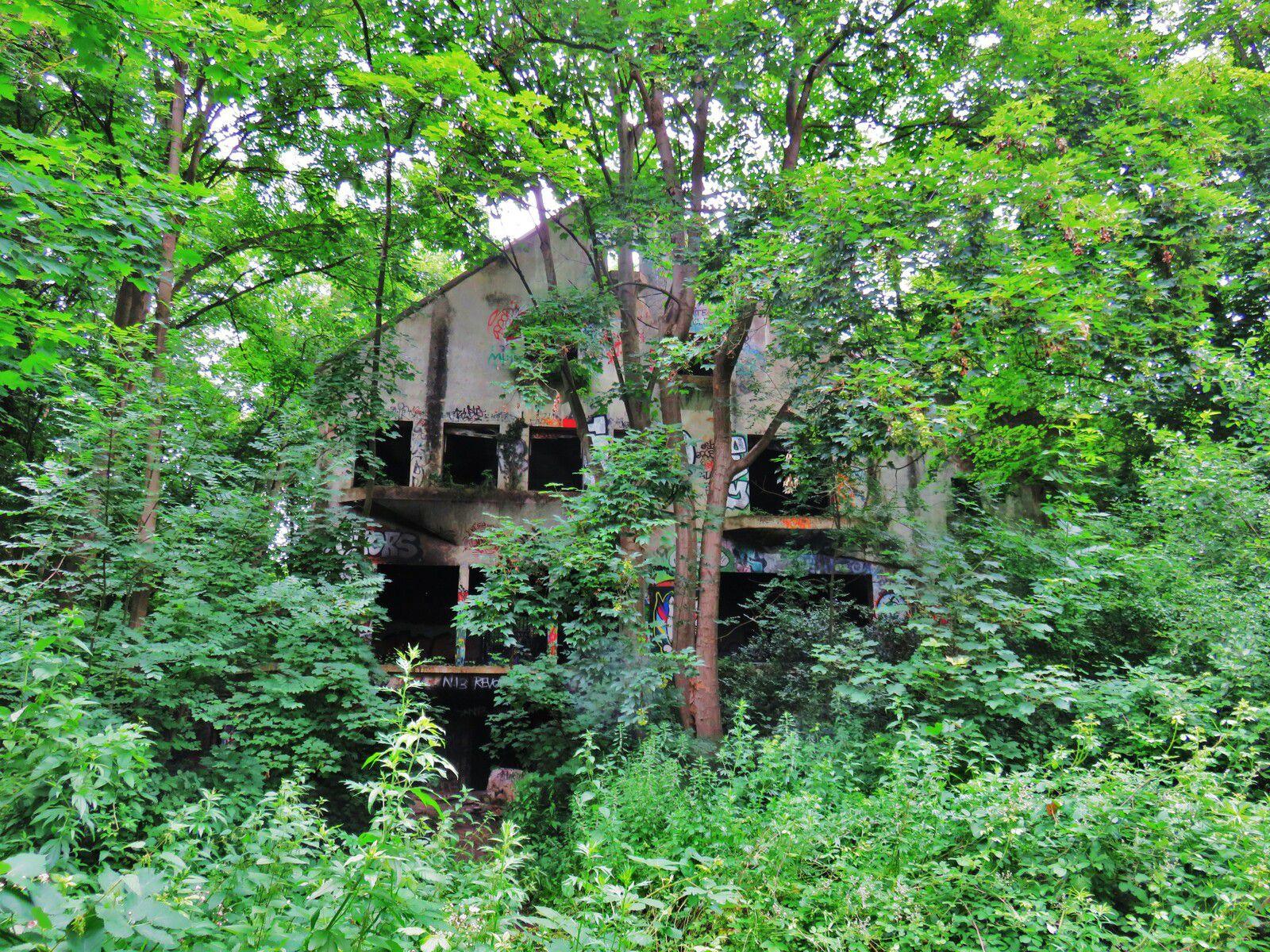 Villa Sapène, Forêt du Mesnil-le-Roi,