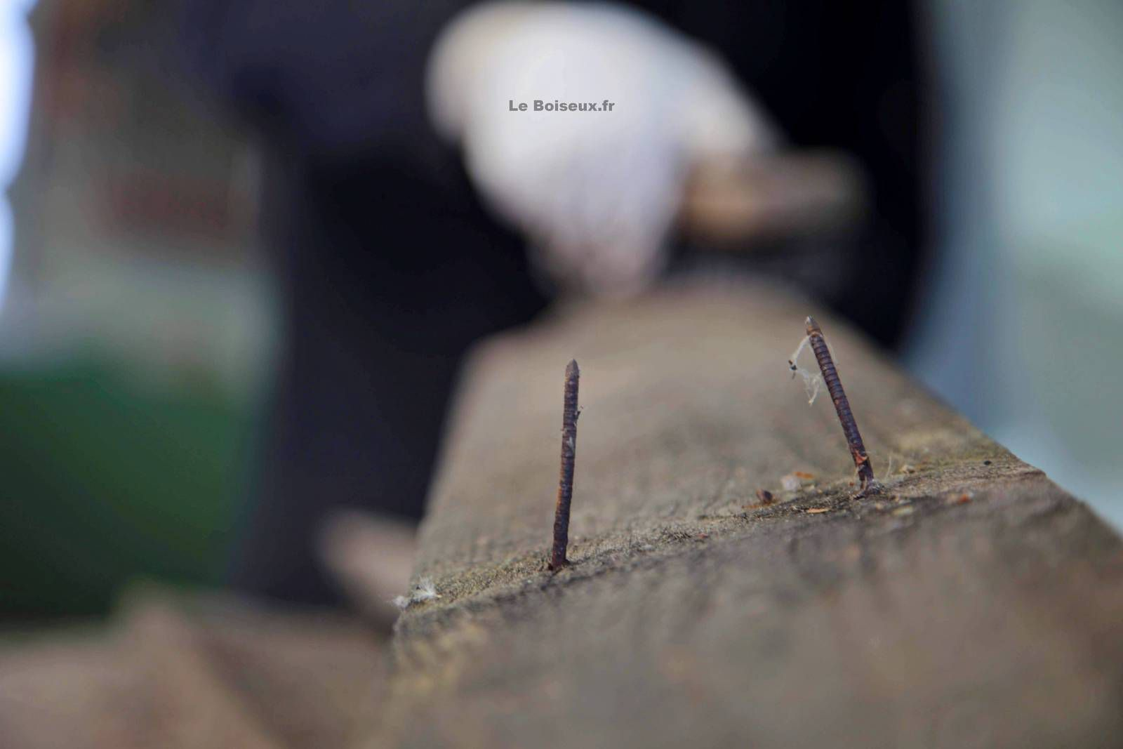 planche par planche, l'ouvrage que l'univers, sous les traits de Safia et Marc, avait commandé à l'artisan recycleur prend la forme d'un plateau de table de salle à manger, une étendue de bois de ville aux proportions exceptionnelles