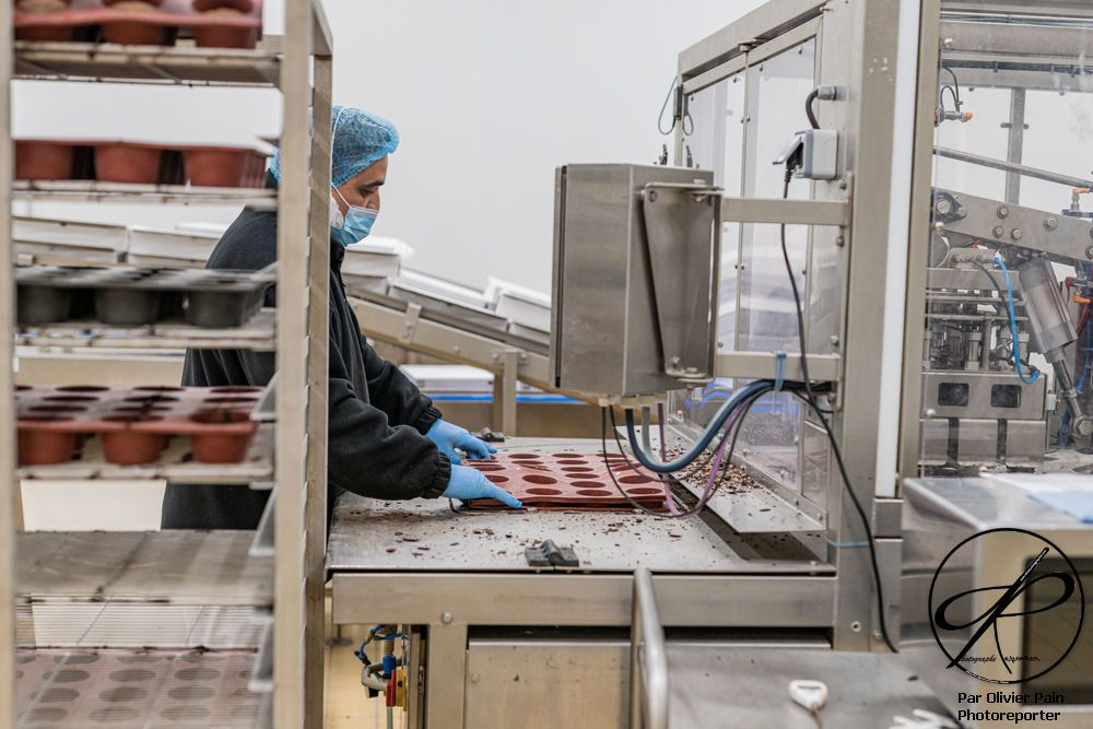 Reportage dans une usine de production agro-alimentaire