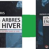 Patrick Eris : Les arbres, en hiver (Éd.Wartberg, 2016) Coup de cœur - Le blog de Claude LE NOCHER