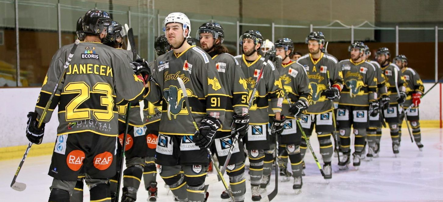 Hockey sur glace CHAMBERY - MONTPELLIER après match article du DL 05 avril 2021