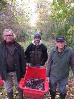 Alevinage du 20 novembre .C'est 183 sandres,86 brochets, 50kgs de perches qui ont rejoints Aude et le Fresquel  Et 50kgs de Black -bass la Cavayere  Merci à nos bénévoles.
