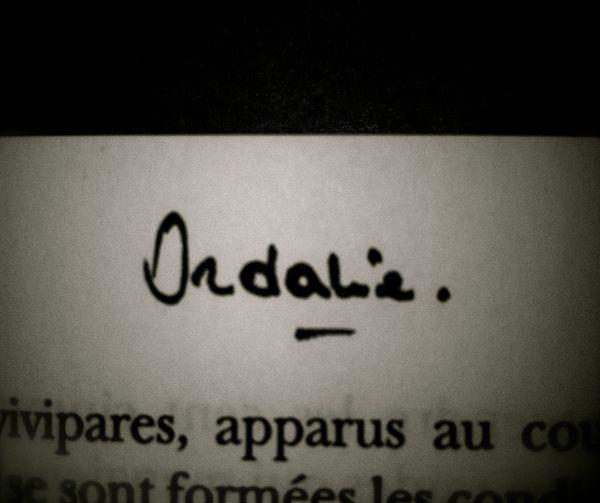 Ordalie,