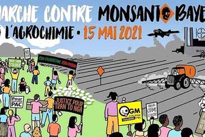 MARCHE MONDIALE CONTRE BAYER-MONSANTO