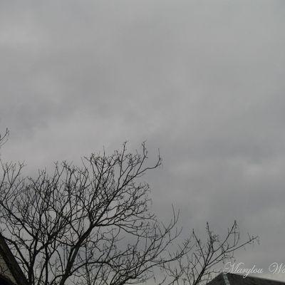 Ciel d'Alsace 255
