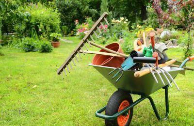 Calendrier de bricolage au jardin : Juillet