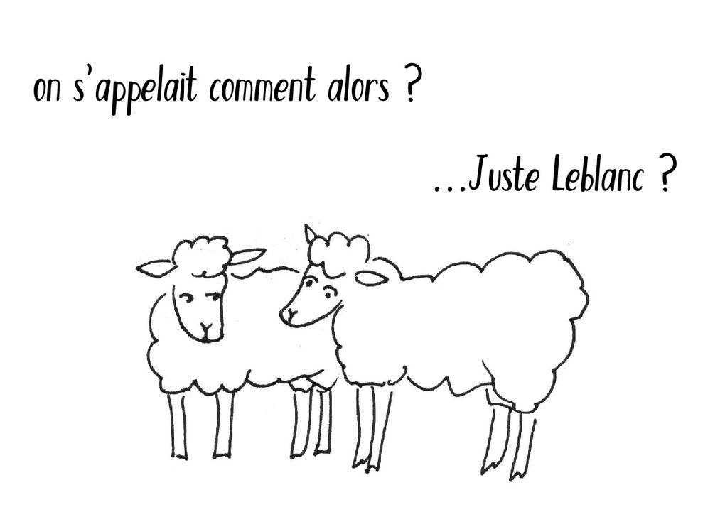 L'origine du Mouton Avranchin en quelques croquis