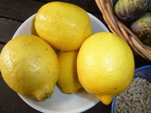 Les citrons et leurs zestes taillés en lamelles fines