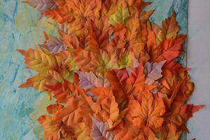 N111_2020 Foglie d'inverno foglie, come recuperare le foglie e creare un quadro