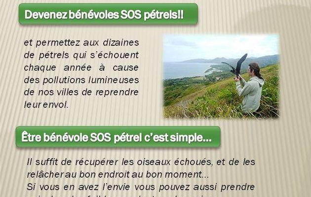 """""""SOS pétrels"""", c'est reparti.... et nous comptons sur vous!"""