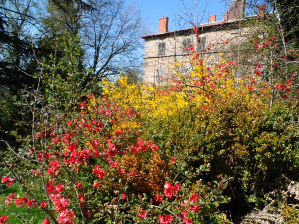 Et voilà le printemps ! avec ses belles couleurs et la promesse de belles journées ensoleillées.