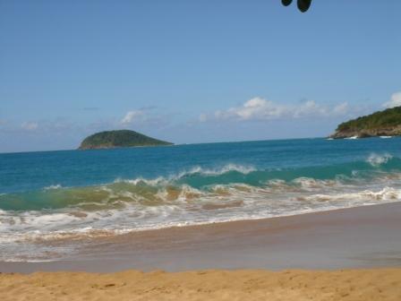 Un dimanche comme les autres Ici ou là des orchidées sauvages L'étendue du bleu du ciel et de la mer La plage de la Perle Ses rouleaux et une ombre propice au pique-nique Et pourquoi pas la sieste
