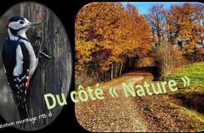 """Côté """" Nature""""............."""