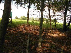 On peut voir ici le talus formé par les terres rejetées, toujours côté Bains les Bains