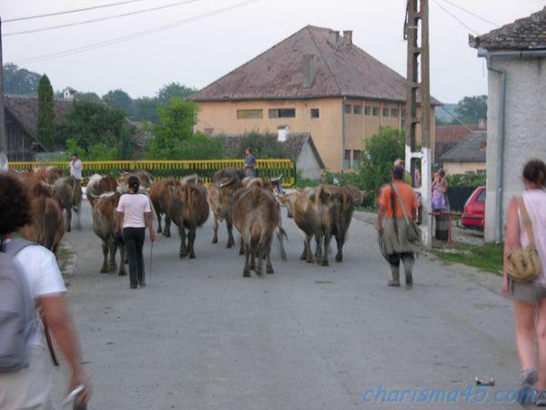 Soars, Roumanie en camping-car