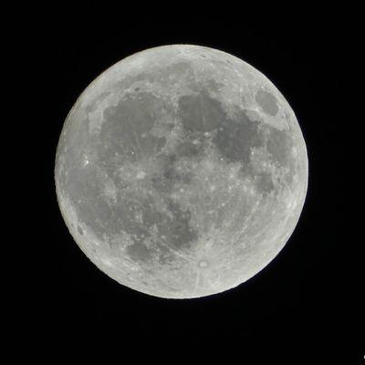 Photos de la super lune du chasseur