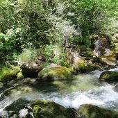 diapo pêche 2019.mp4