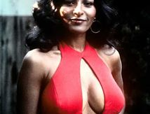 Blaxploitation Queen : Pam Grier
