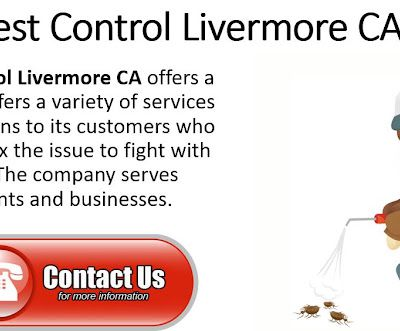 Importance Of Rat Pest Control For Business| Pest Control Livermore CA