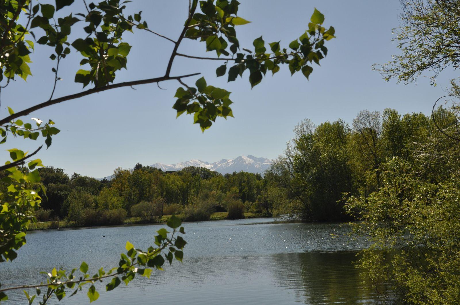 Deux photos bonus avec le lac de Saint Féliu.