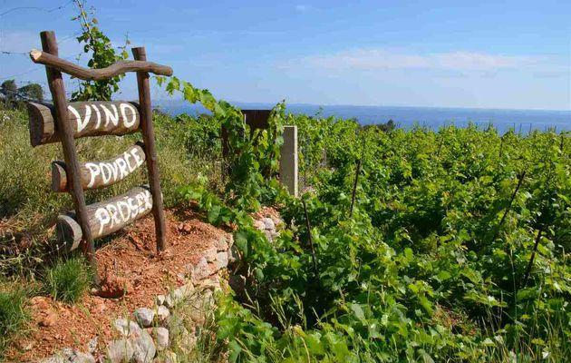 Île de Hvar (Croatie) : Vina Carič / Zlatan Otok / Tomić
