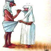 Humour Mariage arabe: Decouverte