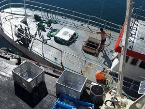 Le Guilvinec retour  de 14 jours  de pêche