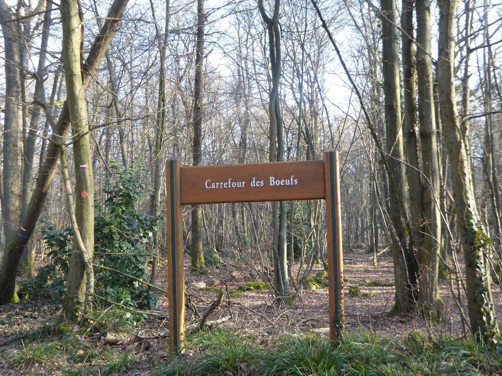 Randonnée ceinture verte de l'île-de-France - Etape 1 - 22,8 km.