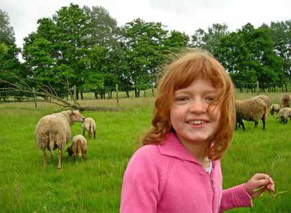 Photos de la visite à la ferme de St Quentin par la classe de CE1.