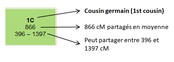 Pourquoi dit-on cousins « germains » ?