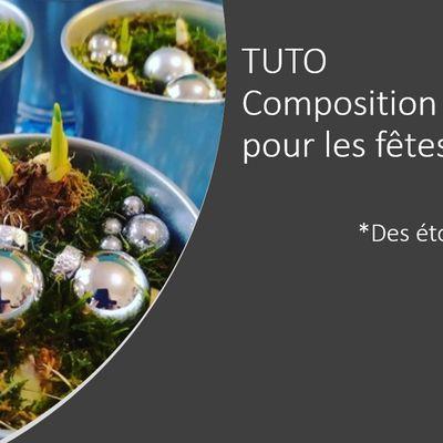 Jacinthe de Noël TUTO - Composition de fleurs pour les fêtes