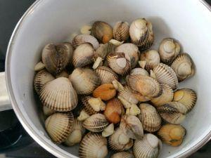 1 - dans une casserole, faire ouvrir les coques en y ajoutant de l'ail dégermé coupé en petits morceaux, du sel et du poivre.