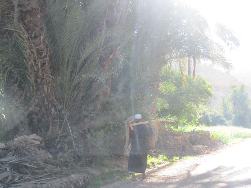 2010 - Maroc-3