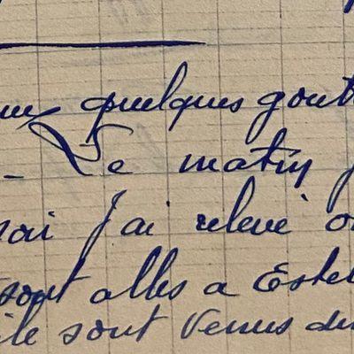Dimanche 24 juin 1951 - relever la vigne