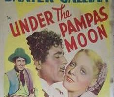 Under the Pampas Moon