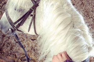 Having fun #horseriding… Octopussy #bracelet for a beautiful moment 💜 #details #hipanema #armcandy #boho #gypsy #jewlery #fashion