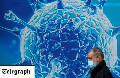 Article 25 Novembre 2020 - The Telegraph - https://www.telegraph.co.uk/global-health/science-and-disease/uk-should-expect-third-wave-coronavirus-next-year-despite-vaccine ( talking about Long Covid in the article)