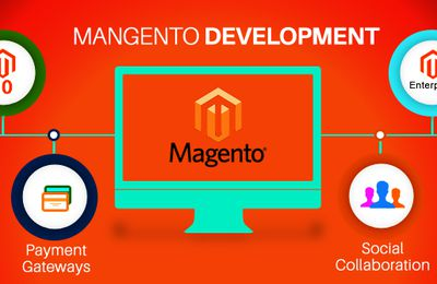 The required skills of every Magento web developer