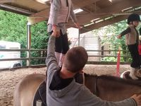 Stage Initation à L'equitation Comines 24-28/07/2017